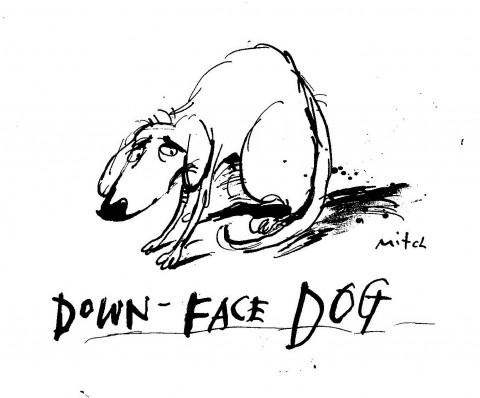 Down Face Dog